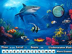 Fish Hidden Letters
