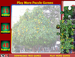 Orange Tree Jigsaw Puzzle